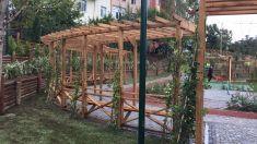 Pergole 2009